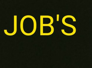 security guard, delivery boy, computer operator, marketing, SBI bank
