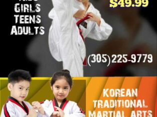 LEARN THE KOREAN TRADITIONAL MARTIAL ARTS