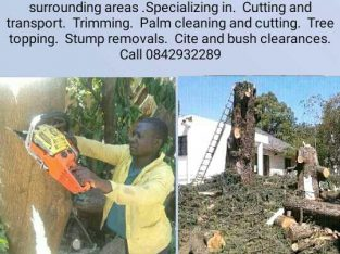 ELIAS TREE FELLING SERVICES