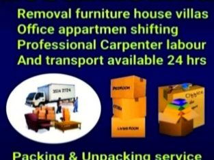 professional mover packer service