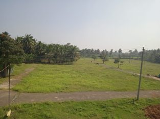 1575 sqft DTCP plots available in mayileripalayam offer price for per cent 1.99 lakhs