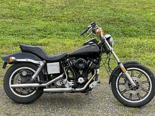 1981 Harley-Davidson for sale at a very affordable price